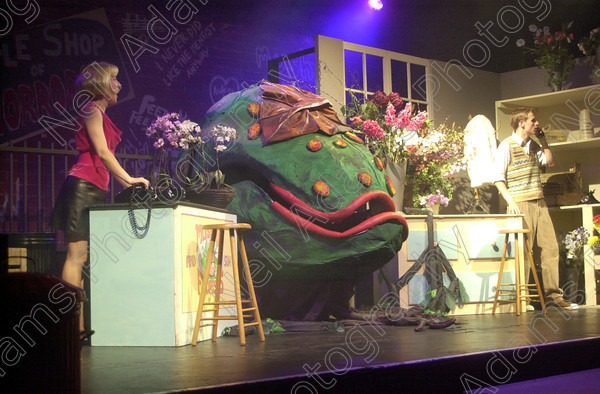 DSC 0375 