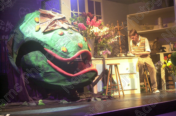 DSC 0412 
